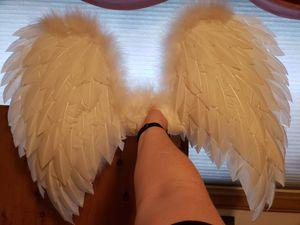 Angel Wings for Sale in Edmonds, WA