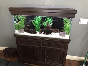 55 gallon fish tank aquarium for Sale in Spring Hill, FL