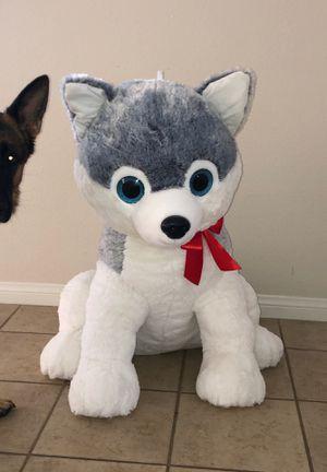 Jumbo Husky for Sale in Lompoc, CA