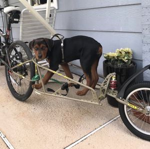 Bike Trailer for Sale in Richardson, TX