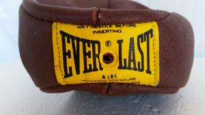 Everlast speed bag for Sale in River Grove, IL