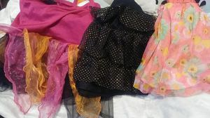 4t 1 costume two skirts for Sale in Jacksonville, FL