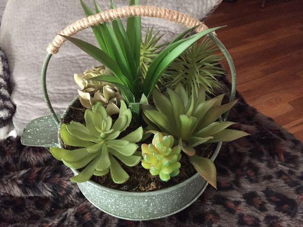 Fake Succulent arrangement