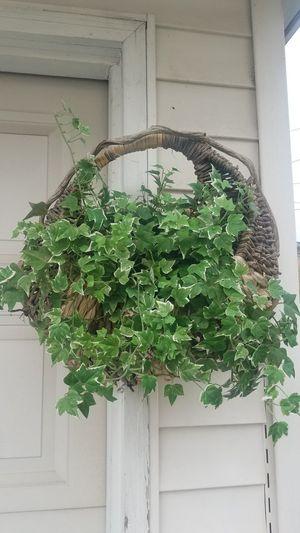 Garden Decoration Fake Artificial Plant Basket for Sale in Oak Lawn, IL