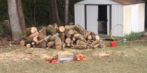 Pecan wood for sale.. Other wood also available for Sale in Loganville, GA