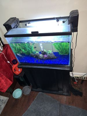 Literally like new 20gal fish tank with stand and more for Sale in Lynwood, CA