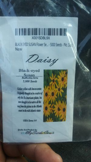 5000 seeds of. Black eyed susan flowers for Sale in Long Beach, CA
