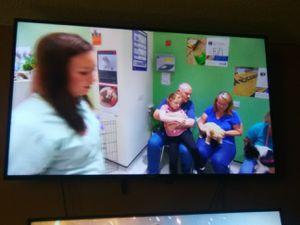 2017 4k smart tv 55 inch for Sale in Nashville, TN