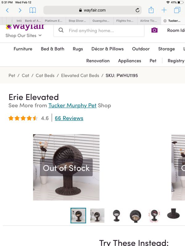Erie Elevated from Tucker Murphy Pet Shop