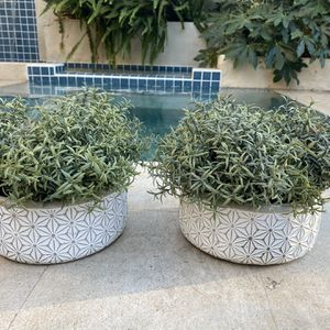 Two Pots With Fake Plants. for Sale in Beverly Hills, CA