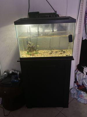 40 gallon fish tank and stand for Sale in Boca Raton, FL