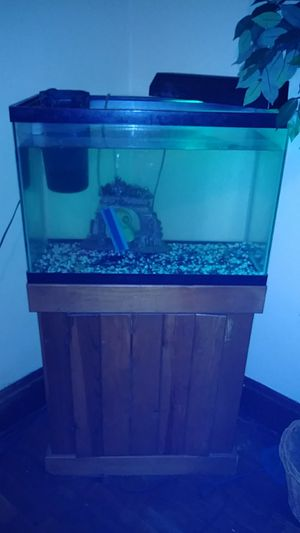 Fish tank, Stand, filter and buble pump. for Sale in Cleveland, OH