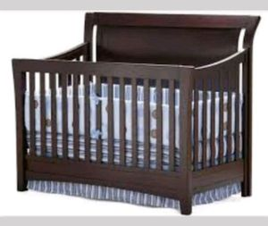 Adele Lifetime Crib for Sale in Annapolis, MD