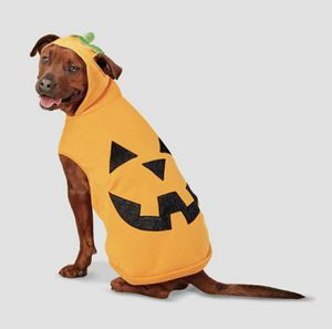 New extra large dog Halloween costume for Sale in Henderson, NV