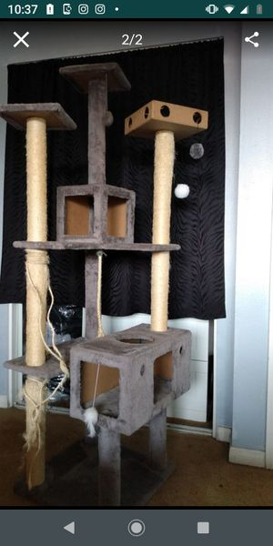 Cat tree for Sale in Buena Park, CA