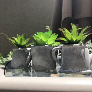Artificial Succulent Plants for Sale in Las Vegas, NV