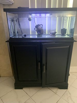 20 Gallon Terrarium/Aquarium with heater, filter and light, and stand as well for Sale in San Jose, CA