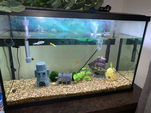 29 gallon fish tank/aquarium for Sale in Bakersfield, CA