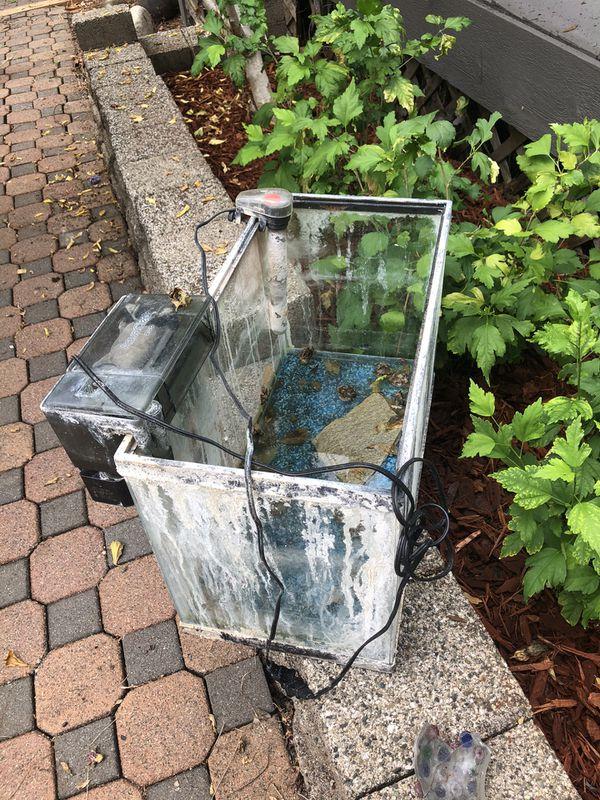 Aquarium 10 Gallon - Free