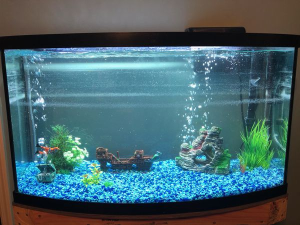36 gallon bow front fish tank with custom stand