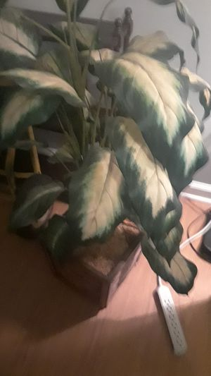 Fake plant for Sale in Woodstock, GA