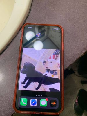 iPhone 11 Pro Max for Sale in Symsonia, KY