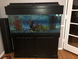 55 Gallon Fish Tank excellent condition for Sale in Long Beach, CA