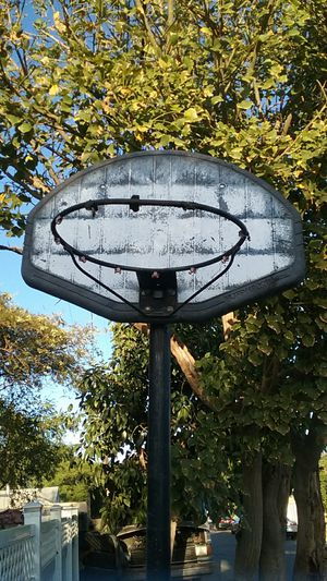 FREE Basketball hoop for Sale in Los Angeles, CA