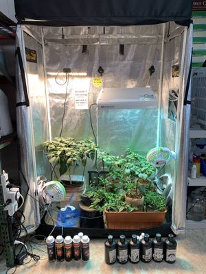 Grow Tent Packages for Sale in Gloucester City, NJ