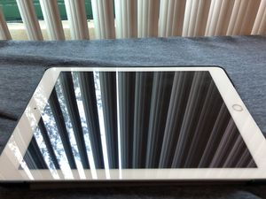 iPad 5th Generation for Sale in Tampa, FL