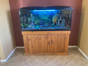 55 Gallon Aquarium with stand & fish for Sale in Surprise, AZ