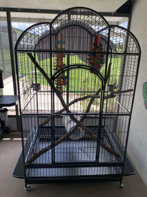 Huge bird cage for Sale in DeLand, FL