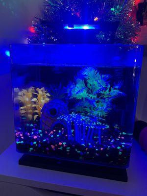 GLO fish tank for Sale in Everett, WA