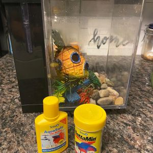 Betta Fish Tank + Food + Water Purifier for Sale in Tampa, FL