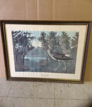 J.J. Audubon Collectable for Sale in Central, SC