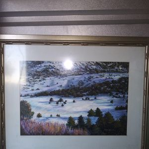 Framed Pictures for Sale in Mansfield, TX