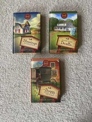 Amish mystery hard bound books for Sale in Medina, OH