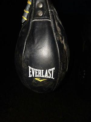 Everlast speed bag for Sale in Vandergrift, PA
