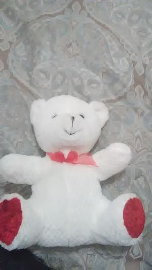 Beautiful white Teddy bear- Like new for Sale in Albuquerque, NM