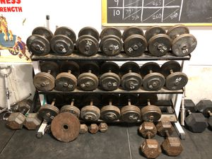 Dumbbell Set w/ Rack - 25# through 75# for Sale in Trout Valley, IL