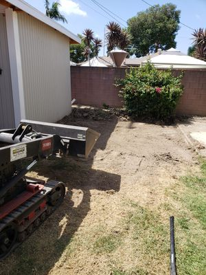 Bobcat for Sale in Norwalk, CA