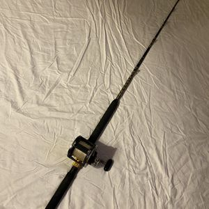 Daiwa Sealine 600H Roller Combo for Sale in Webster, TX