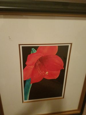 Framed Acrylic Flower for Sale in Fuquay Varina, NC