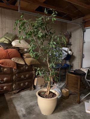 Artificial tree for Sale in Kirkland, WA
