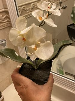 Cute Little Fake Plant for Sale in Hollywood,  FL
