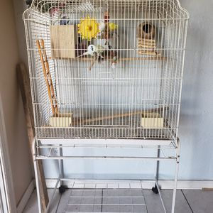 pájaros australianos for Sale in Phoenix, AZ