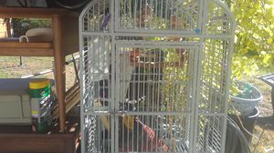 Large bird cage for Sale in Saint Ann, MO