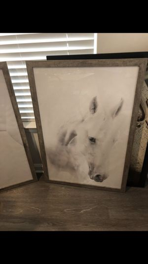 2 VERY LARGE White Horse Pictures for Sale in Germantown, MD