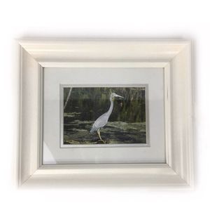 Heron Egret Bird Photography Print Florida for Sale in Princeton, NJ