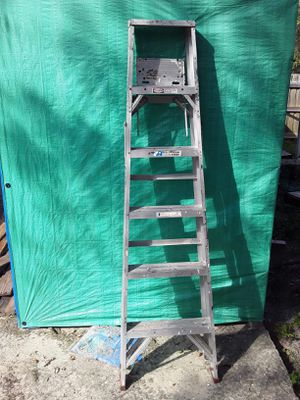Self made shed and lattet $30 for Sale in Lutz, FL